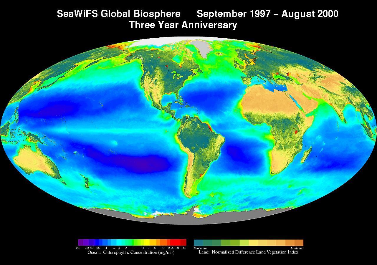chlorophyll-Konzentration der Ozeane